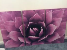 Pink Flower Canvas Picture Painting 3 piece set 60x90