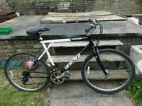 GT Palomar Hybrid Bicycle