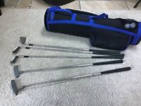 5 clubs - 3 irons and two putters and bag