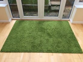 Rug for living room. Ikea Hampen 133x195cm. Green.