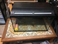 Large fish tank and 3 filters