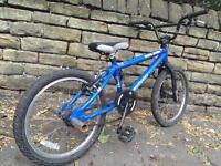 Mongoose full sized bmx bike