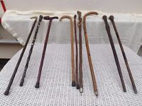 Walking stick collection