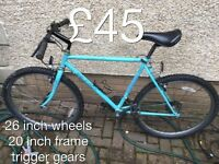Gents or ladies or kids Mountain Bikes £30 - £75 mountain bike cycle