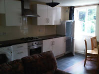 1 bedroom Large Ground Floor flat fully furnished with garden and parking Suit Professionals