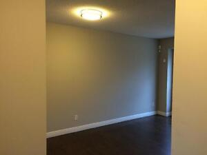 Student Townhouse for Rent in London - close to UWO & Fanshawe!