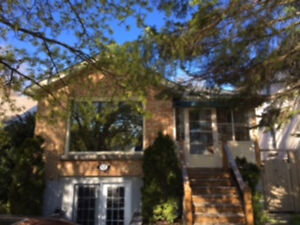Large 4 Bedroom Home on College Street