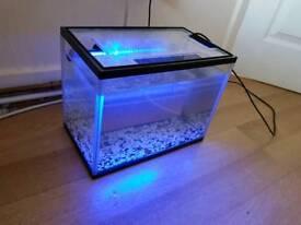 Fish tank 11.L