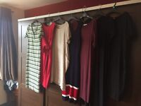 Maternity Dresses (12-14)