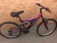 Pink/Purple Adult bike for sale