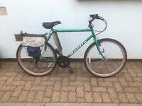 Apollo Avio 10 speed shimano bicycle for sale, well shod.