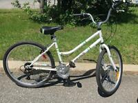 Everyday travellers woman's comfort bike!