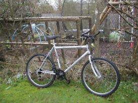 falcon warrior,22 in frame cycle,very tidy indeed,little used