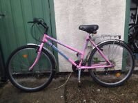 Ladies Townsend Bike
