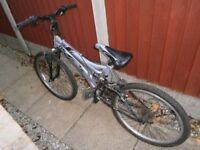 Dunlop DS SE Mountain Bike (Junior)