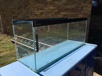 Clear Seal 3ft fish tank