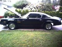 81 z28 project