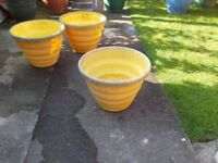Set Three Yellow Plant Containers