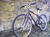 Giant Boulder sports 500 mountain bike