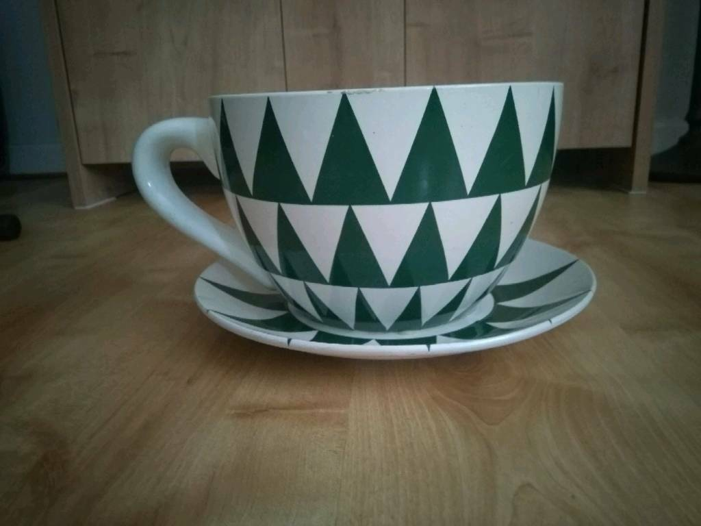 Cup And Saucer Planter In Emersons Green Bristol Gumtree