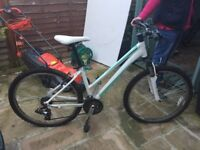 Beautiful Ladies GIANT- Mountain Bike- Hardly used REDUCED - QUICK SALE
