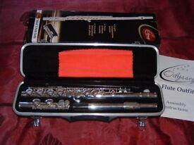 Odyssey 'Debut' 0FL100 flute