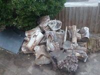Hardwood Logs to split. FREE TO collecter.