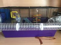 Two dwarf hamsters & cage