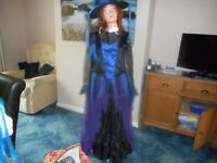 Halloween or fancy dress Witches outfit with matching hat