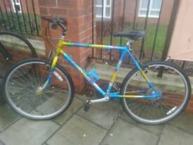 *SERVICED* RALEIGH MANTIS - mountain bike in great condition