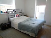 BEAUTIFUL 1 BEDROOM GARDEN FLAT IN PUTNEY