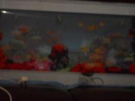 revolving false fish wall light