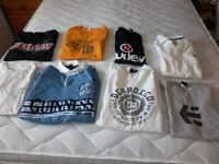 Assorted T shirts, hoodies, sweathirts (some well known brands)