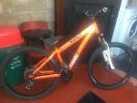 Mountain bike for sale phone for more information 07495419220