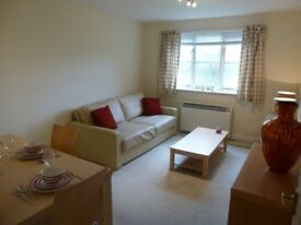 Bright, spacious, clean, smart flat in New Malden/Kingston area