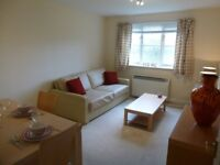 Just redecorated, bright, spacious, clean, smart flat in New Malden/Kingston area