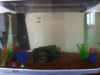 90l fish tank with all accessories included