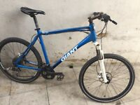 Giant hybrid/mountain bike not carrera trek kona Fuji Marin specialized ridgeback