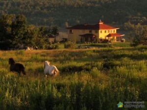 649 000$ - Domaine et villa à vendre à St-Adrien
