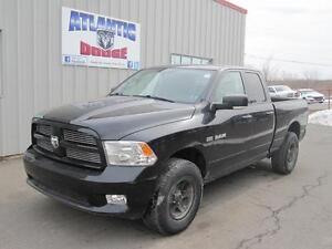 2010 Dodge RAM Truck