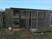 14x7 shed