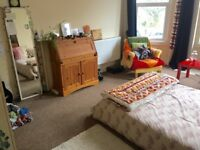Nice Big Room, St. Andrews / Gloucester Rd