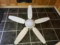 Hunter Ceiling fans with light