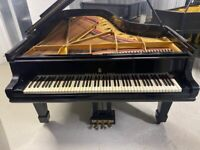 Steinway & Sons Model C 224 Semi Concert Grand Piano - Fully Restored - Delivery