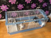 2female rabbits and cage for sale