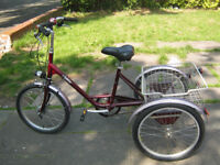 3 wheel pashley tricycle with shopping basket