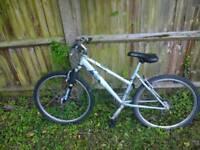 Girls, teenage bike