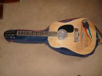 Peavey Briarwood 12 String Guitar. Built-in Tuner. Complete with Stand. Excellent Condition