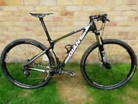 Custom giant 29er carbon