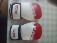 Revenger Boxing Gloves Punch Bag Pro 8oz and Title focus pads